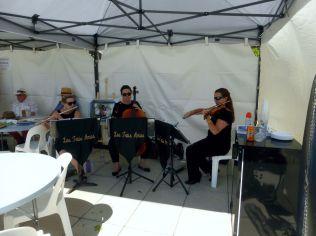 COTM15 Musicians