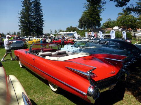 cotm16-cadillac-1959-rear
