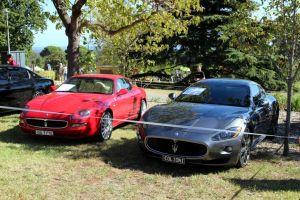 Maserati Coupes